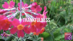 Spiritual Formation  – Thankfulness