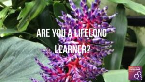 Spiritual Formation: Are You A Lifelong Learner?